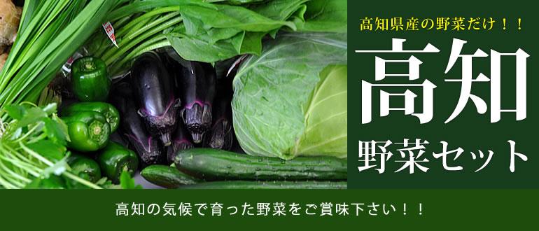 高知の気候で育った野菜をご賞味下さい!!