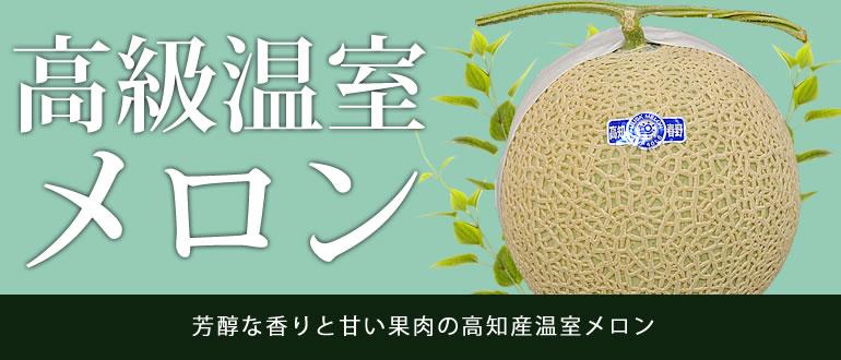 芳醇な香りと甘い果肉の高知産温室メロン